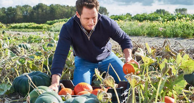 Az augusztusi zöldségek