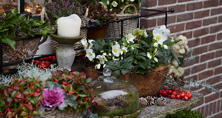 A dekoratív téli asztal