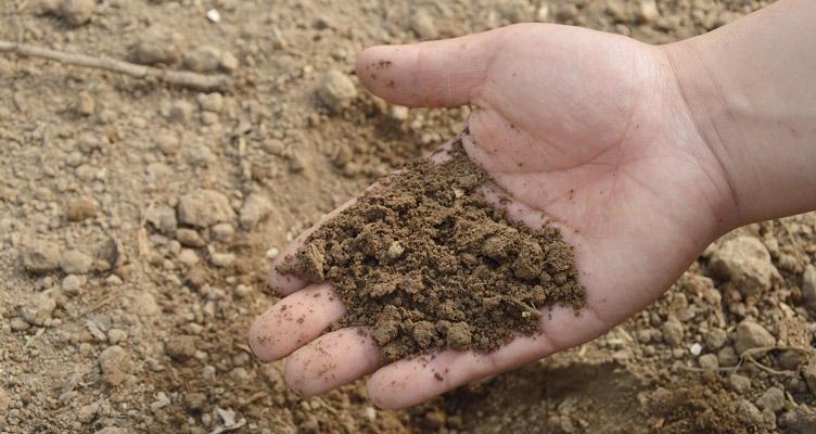 A talaj struktúrájának javítása