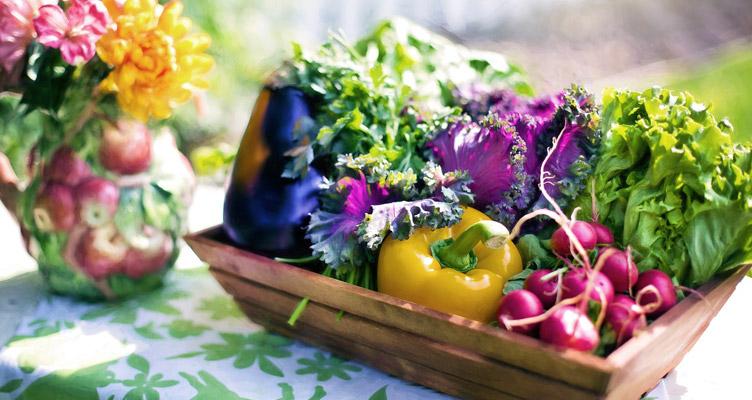 Zöldségek és fűszernövények júliusban