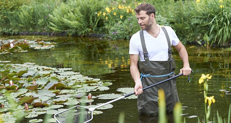 Tavaszi tippek a kerti tavak gondozásához