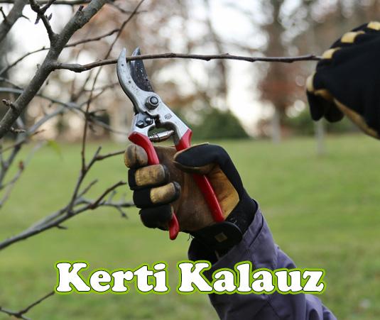 Kerti Munkák- December 25-31