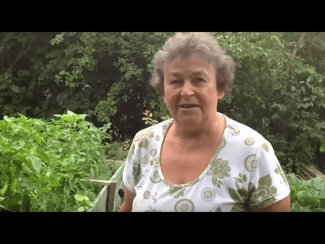Jutja mama kertje júniusban